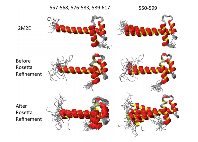 Superimposed ribbon diagrams using different regions for three HR8254A ensembles: 2M2E, ASDP structures before Rosetta refinement, and ASDP structures after Rosetta refinement