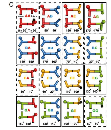 Discrete state model of protein local geometry.