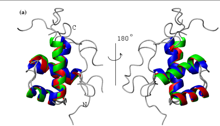 a Overlay of the ribbon representations of ALX4 (209–280) (green), ZHX1 (462–532) (red), and CASP8AP2 (1916–1982) (blue)