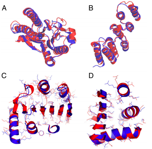 Structural comparison of high-resolution CS-HM-Rosetta structures with conventionally determined NMR (A, B, and D) and X-ray (C) structures.