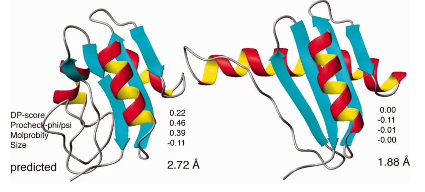 Examples of structural quality prediction for the CASD-NMR target AtT13. Three models of decreasing accuracy are shown in ribbon style from left to right. The values of the normalized validation scores, the predicted GLM-RMSDs, and the actual RMSDs to the reference structure are indicated.