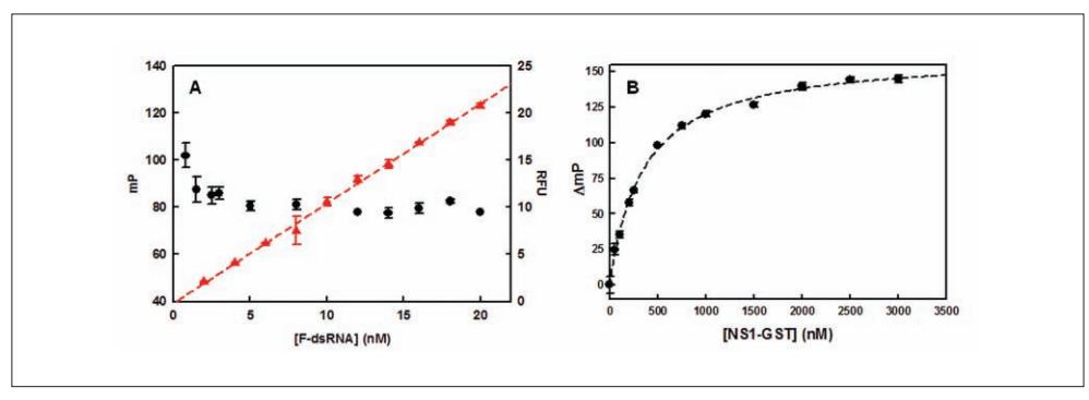 Fluorescence characteristics of the fluorescence polarization (FP)–based binding assay