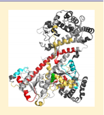 SecA is an intensively studied mechanoenzyme that uses ATP hydrolysis to drive processive extrusion of secreted proteins through a protein-conducting channel in the cytoplasmic membrane of eubacteria.