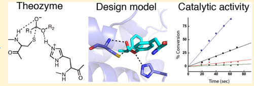 Nucleophilic catalysis is a general strategy for accelerating ester and amide hydrolysis
