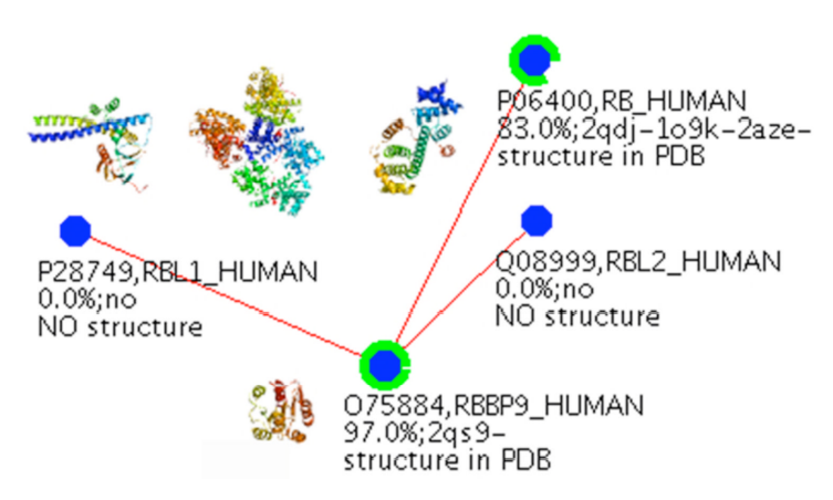 RBBP9 interacts with the Rb family members, including Rb, RBL1 (p107 in the text), and RBL2 (p130 in the text).