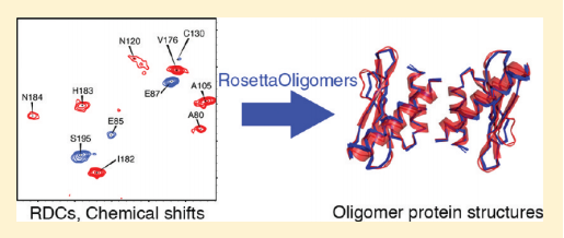 Symmetric protein dimers, trimers, and higher order cyclic oligomers play key roles in many biological processes