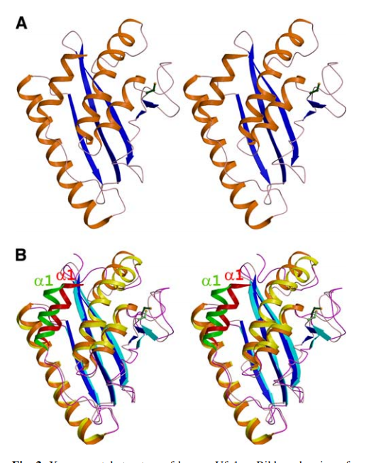X-ray crystal structure of human Ufc1