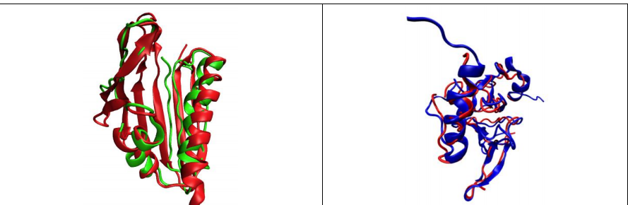 Results of REDCRAFT structure calculation (red) compared to X-Ray structures (blue)